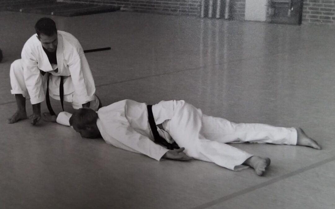 Kishido Karate | Leiden | Bunkai | Alles over karate