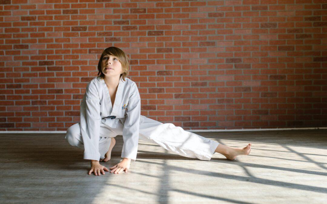 Kishido Karate | Leiden | Kinderen | Ontwikkeling | Vechtsport | Weerbaarheid